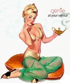 genie-femme